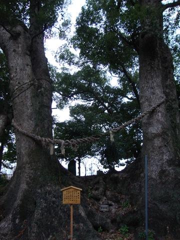 地震の神様「細江神社」 - はー...