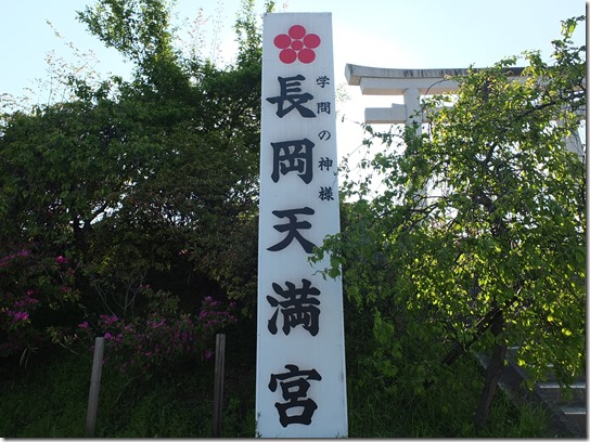牡丹 関西 2017 058