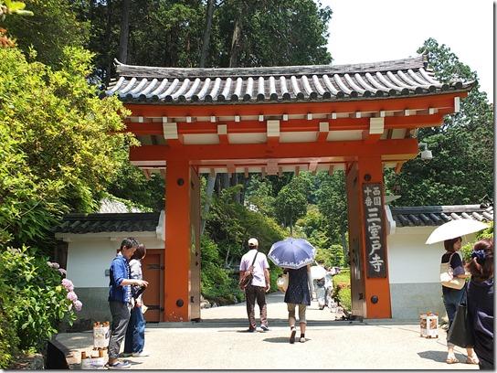 奈良・京都紫陽花2017 091