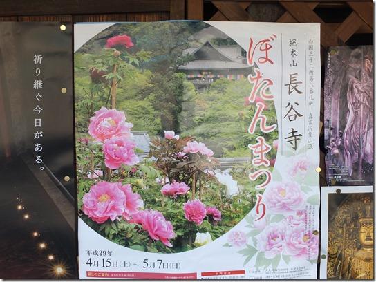牡丹 関西 2017 131