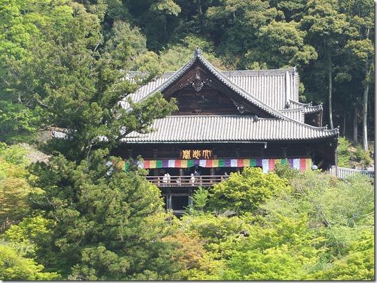 牡丹 関西 2017 193