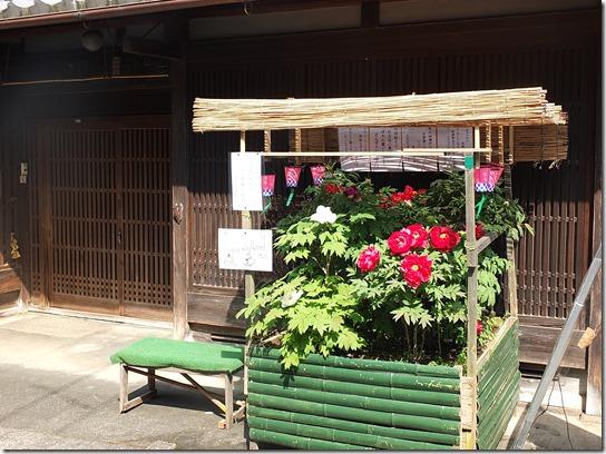 牡丹 関西 2017 205