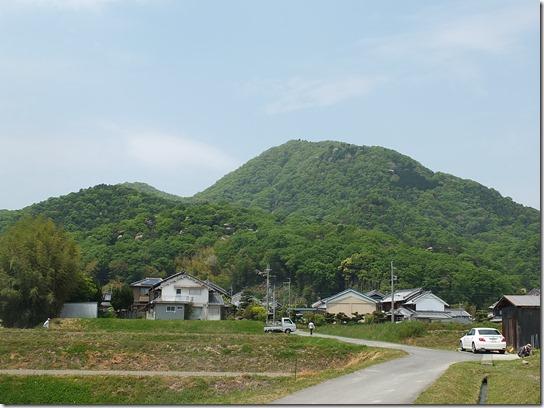 牡丹 関西 2017 212