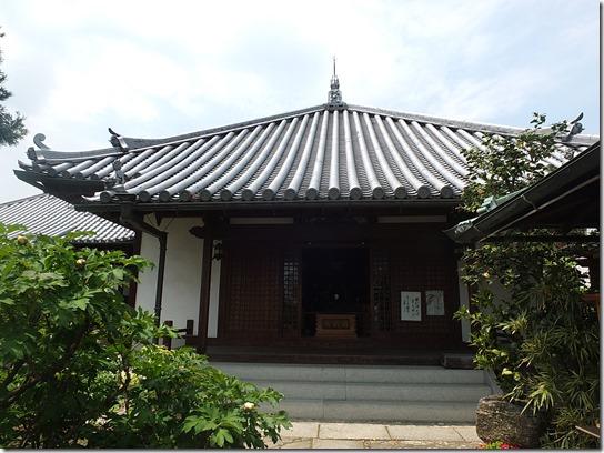牡丹 関西 2017 224