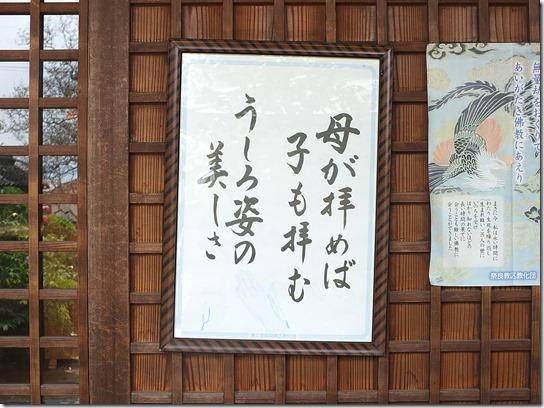 牡丹 関西 2017 225