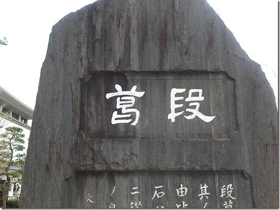 鎌倉 牡丹 桜 251