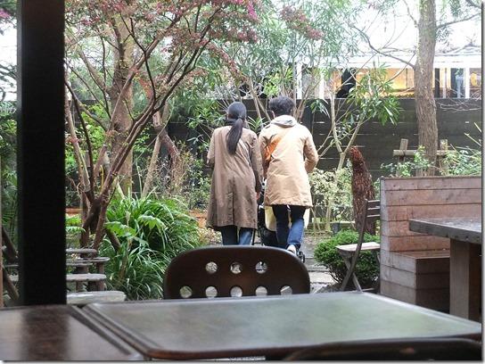 鎌倉 牡丹 桜 408
