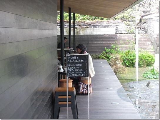 鎌倉 牡丹 桜 425