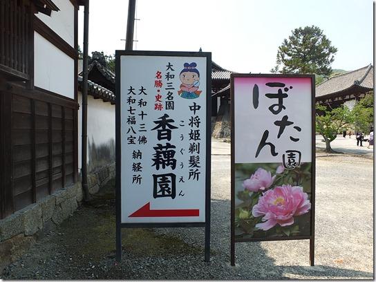 牡丹 関西 2017 444