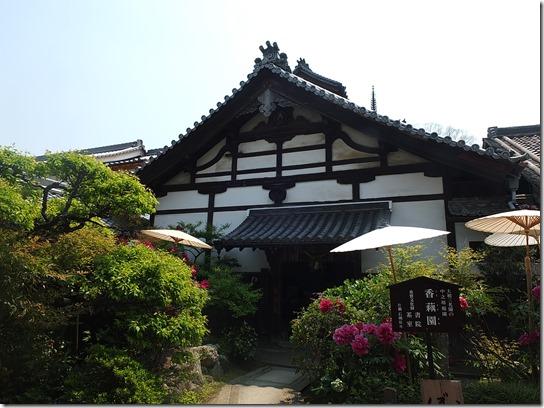 牡丹 関西 2017 449