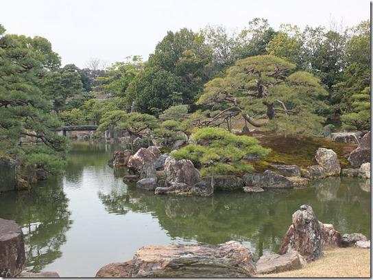 2017京都桜 887