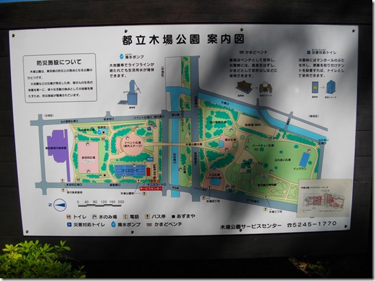 コスモス 東京 002