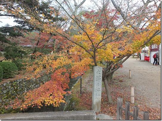 2016京都紅葉 007