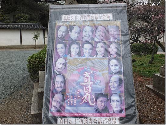 2017 関西 梅 007