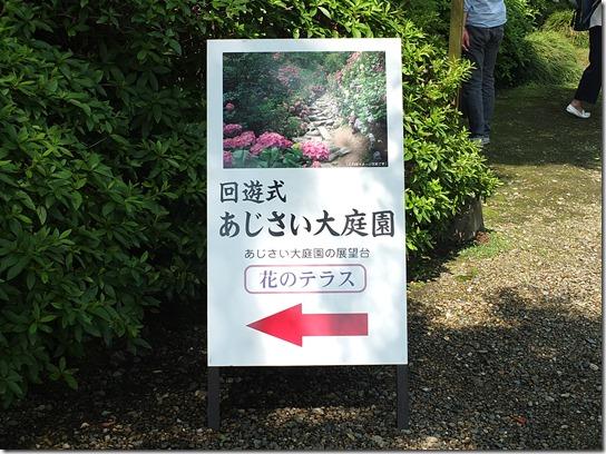 奈良・京都紫陽花2017 009
