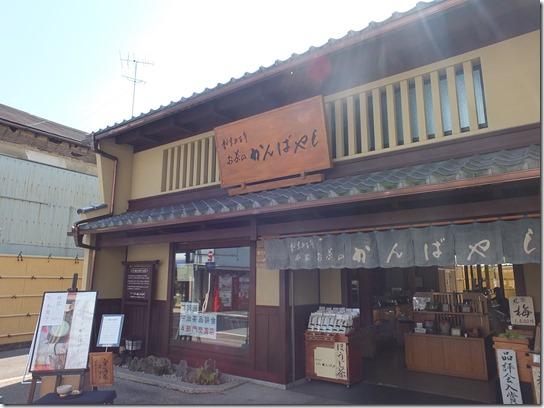 2017京都桜 015