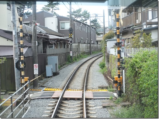 鎌倉 牡丹 桜 016