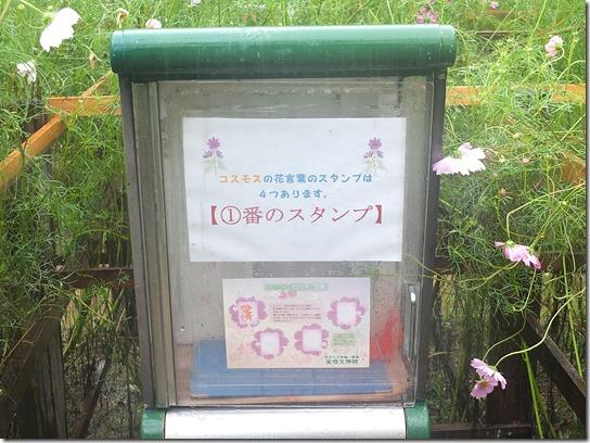 コスモス奈良 018