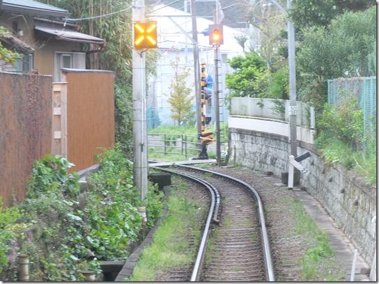 鎌倉 牡丹 桜 019