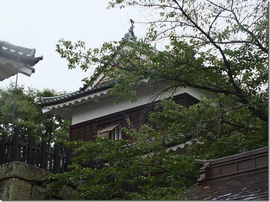 上田 027