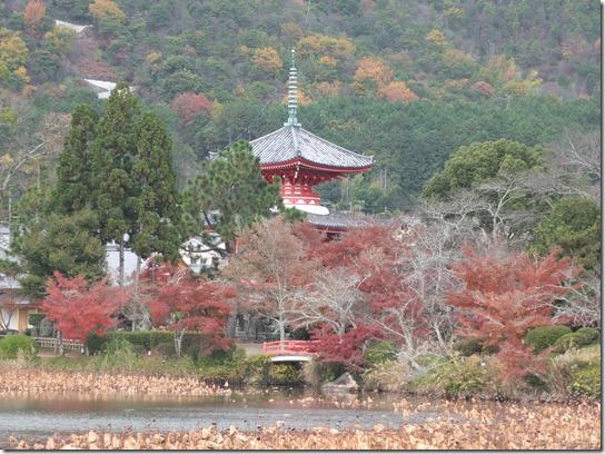 2016京都紅葉 028