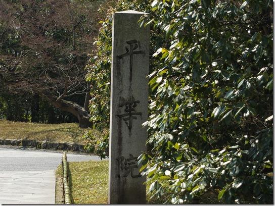 2017京都桜 028