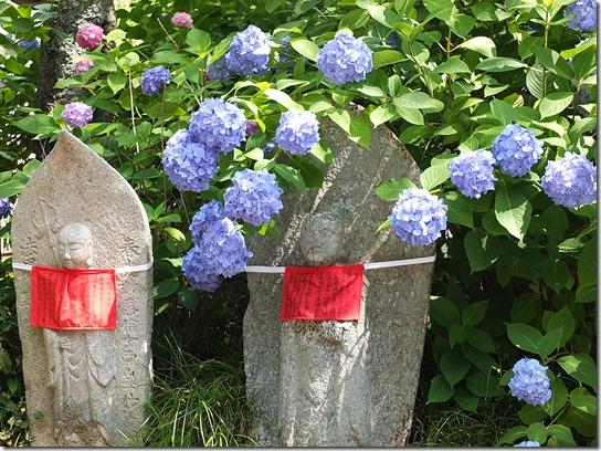 奈良・京都紫陽花2017 032
