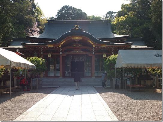 牡丹 関西 2017 041
