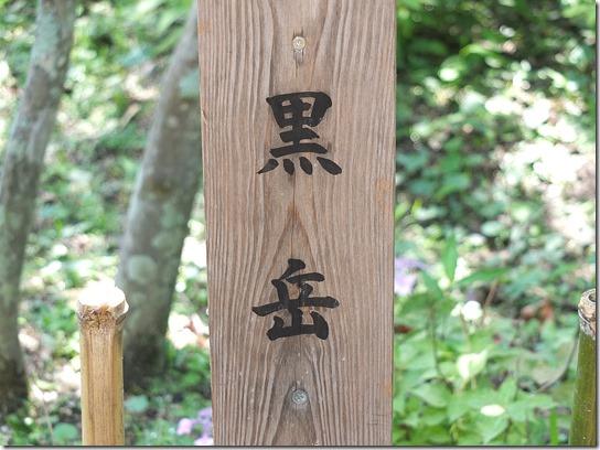 奈良・京都紫陽花2017 047