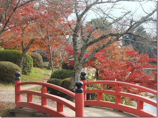 2016京都紅葉 053
