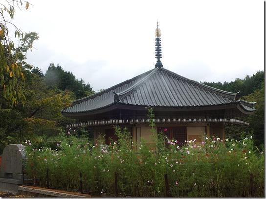 コスモス奈良 066
