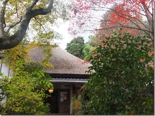 2016京都紅葉 071