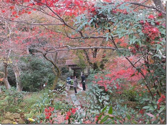 2016京都紅葉 072