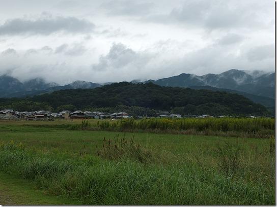 コスモス奈良 076