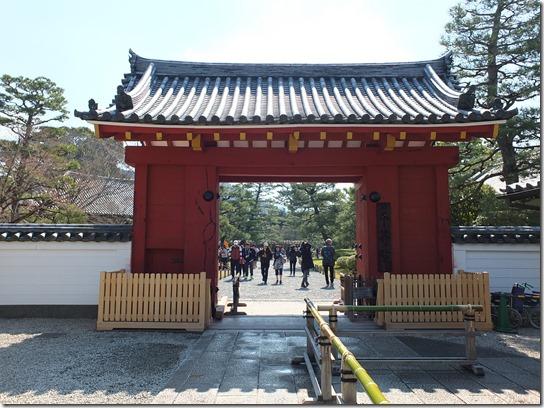 2017京都桜 080
