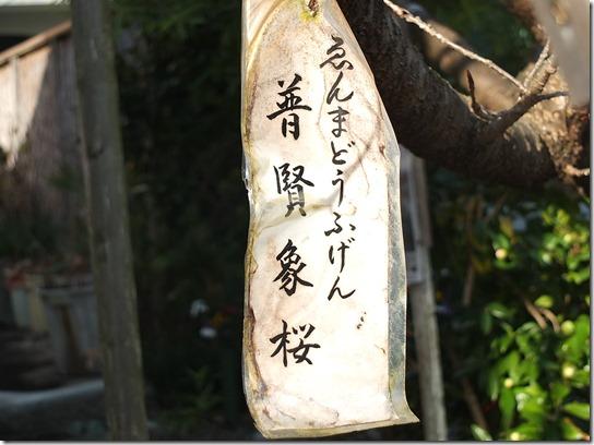 2017京都節分 083