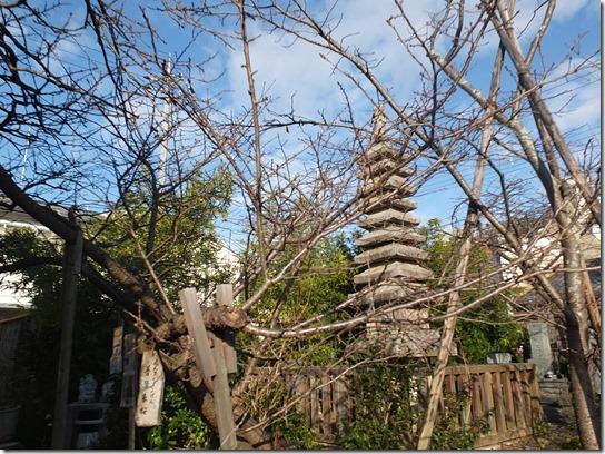 2017京都節分 084