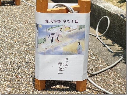 奈良・京都紫陽花2017 089
