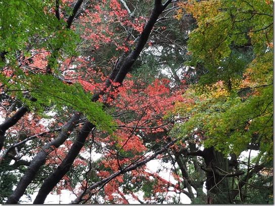大阪 鎌倉 東京 093