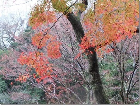 大阪 鎌倉 東京 096