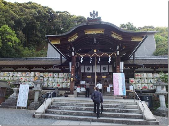 牡丹 関西 2017 098