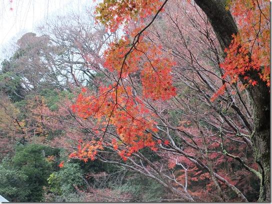大阪 鎌倉 東京 099