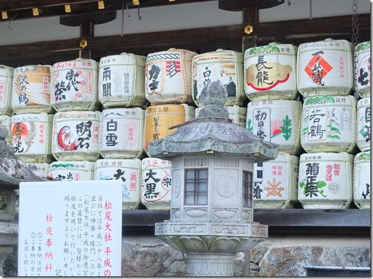 牡丹 関西 2017 099