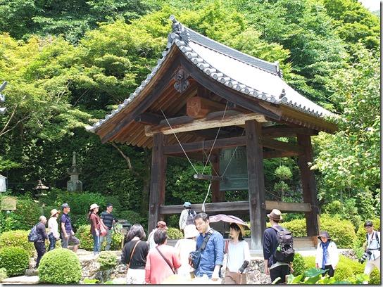 奈良・京都紫陽花2017 101