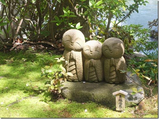 鎌倉 牡丹 桜 114