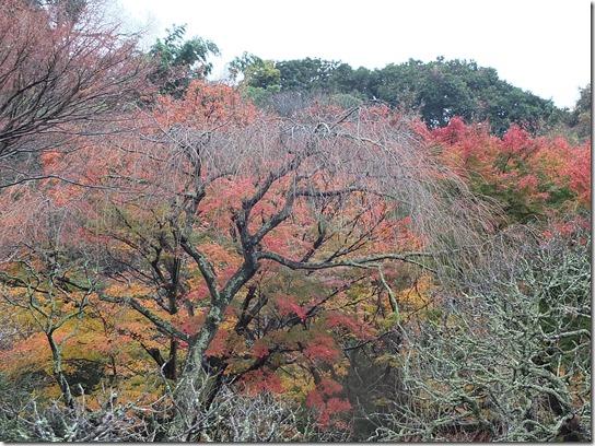 大阪 鎌倉 東京 121
