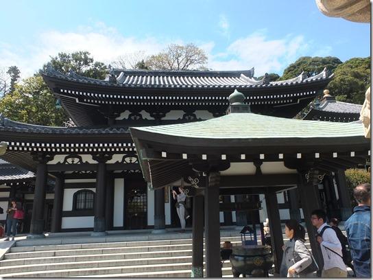 鎌倉 牡丹 桜 122