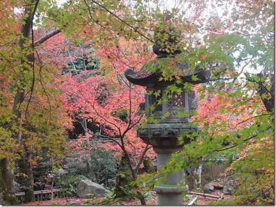 2016京都紅葉 123