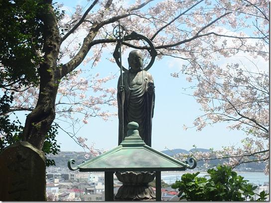鎌倉 牡丹 桜 138