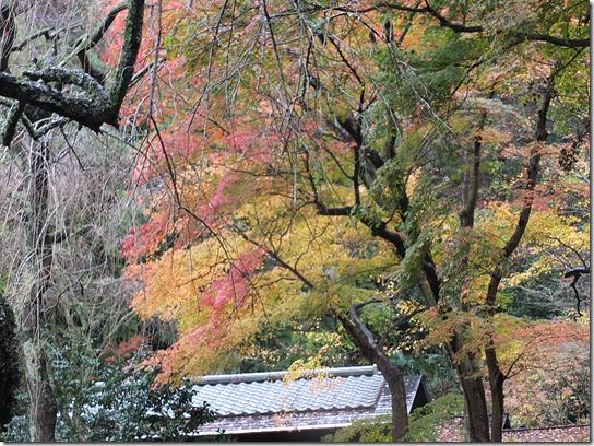 大阪 鎌倉 東京 145